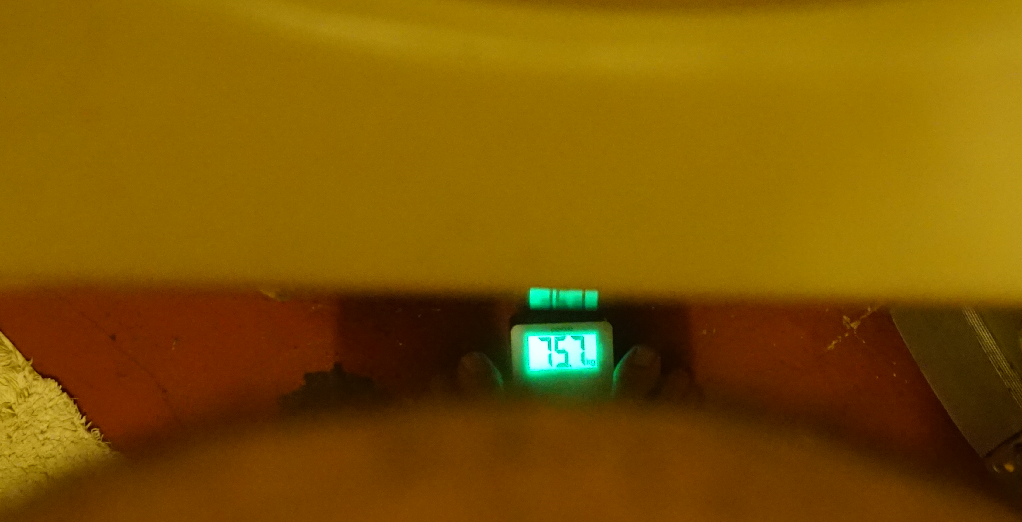 weight day 1